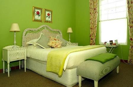 Kết quả hình ảnh cho phòng ngủ màu xanh lá cây