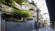 """""""Nhà tre"""" như rừng cây trong hẻm Sài Gòn, vừa tắm vừa nghe chim hót"""