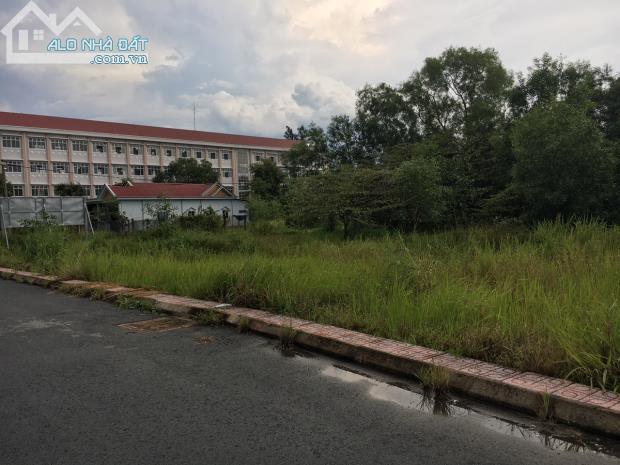 Cần tiền bán gấp,đất thổ cư Bình Chánh,300tr/100m2,xdtd.