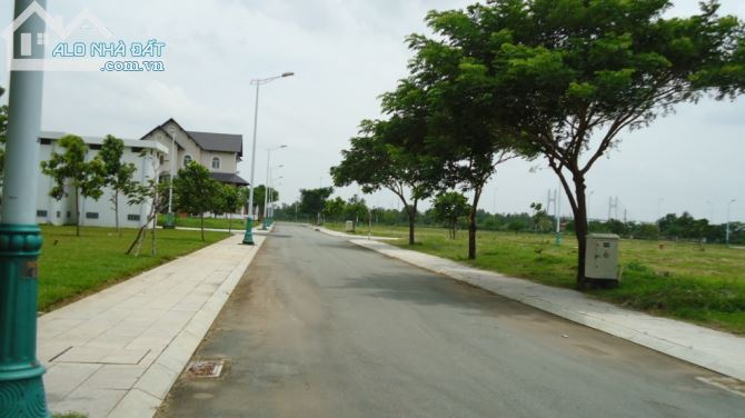 Cây xanh 2 bên đường